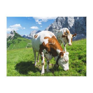 Ganado en alto pasto en la montaña 2 de Karwendel Lienzo Envuelto Para Galerías