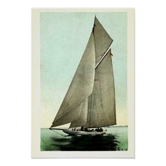 Ganador 1903 de la taza de América del yate de la  Póster