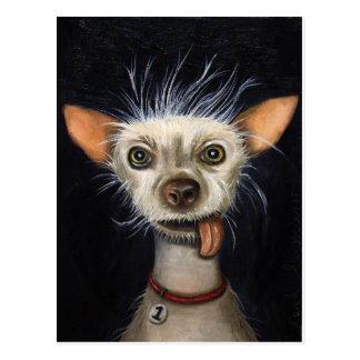Ganador de la competencia fea 2011 del perro postal