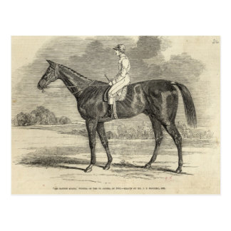 Ganador de sir Tatton Sykes', del St. Leger Postales