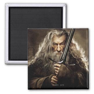Gandalf Character Poster 1 Refrigerator Magnet