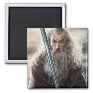 Gandalf Character Poster 2 Refrigerator Magnet