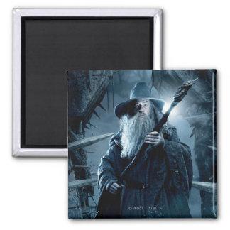 Gandalf Character Poster 3 Fridge Magnets