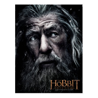 Gandalf Close Up Postcard