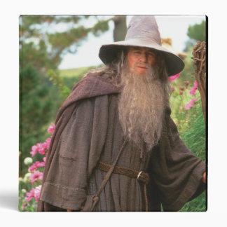 Gandalf con el gorra