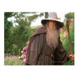 Gandalf con el gorra postales