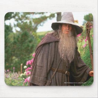 Gandalf con el gorra tapete de ratones