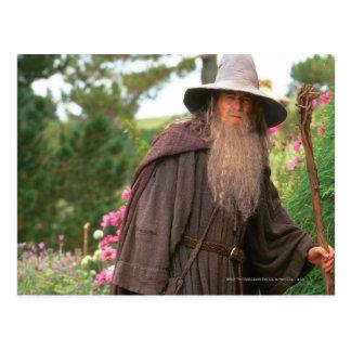 Gandalf con el gorra tarjeta postal