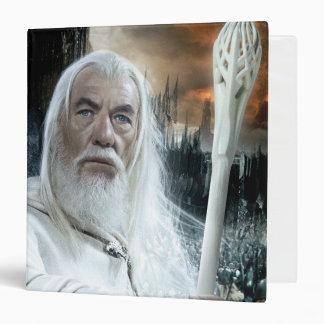 Gandalf con el personal