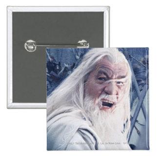 Gandalf In Battle Pins