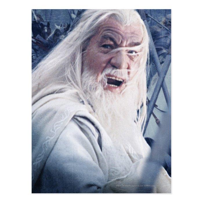 Gandalf In Battle Postcard