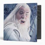 Gandalf In Battle Vinyl Binder