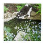 Gandalf nombrado gato y nomeolvides - fotografía teja  ceramica