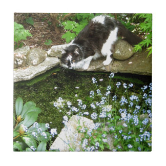 Gandalf nombrado gato y nomeolvides - fotografía azulejo cuadrado pequeño