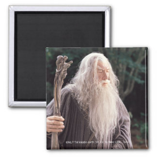 Gandalf Standing 2 Inch Square Magnet