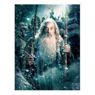 Gandalf The Gray Postcard