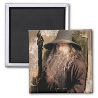 Gandalf With Staff Refrigerator Magnet