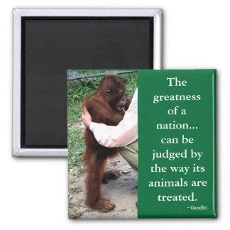 Gandhi's Animal Quotation 2 Inch Square Magnet