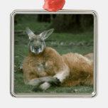 Gandulear el canguro adornos