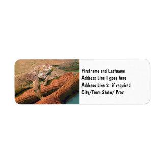 Gandulear el lagarto etiquetas de remite