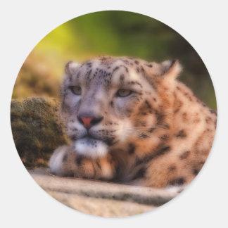 Gandulear el leopardo etiquetas