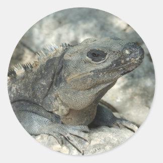 Gandulear la iguana etiquetas redondas