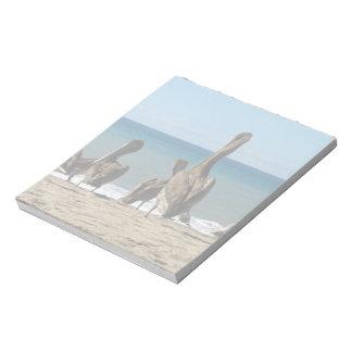 Gandulear pelícanos de la playa; Ningún texto Libreta Para Notas