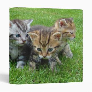 Gang of Adorable Kittens 3 Ring Binder