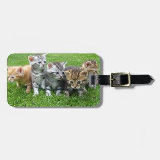 Gang of Adorable Kittens Bag Tag