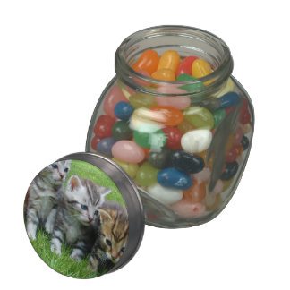 Gang of Adorable Kittens Jelly Belly Candy Jar