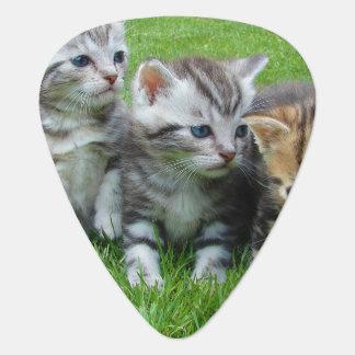 Gang of Adorable Kittens Guitar Pick