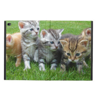 Gang of Adorable Kittens Powis iPad Air 2 Case