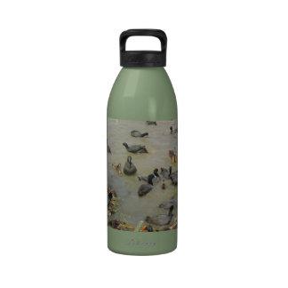 Gang of Water Fowl Water Bottle