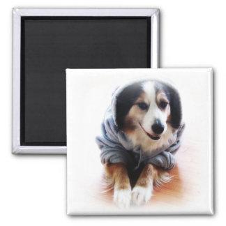 Gangsta Dog Wearing Hoodie Magnet