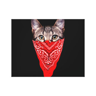 gangster cat - bandana cat - cat gang canvas print