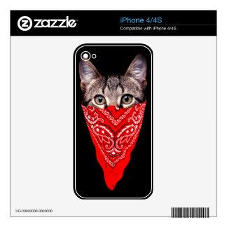 gangster cat - bandana cat - cat gang skin for the iPhone 4