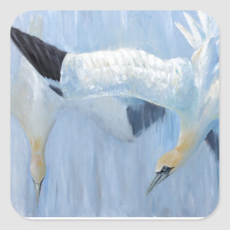 Gannets diving unique gifts for you square sticker