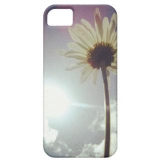 Gänseblümchen will hoch hinaus…. iPhone SE/5/5s case