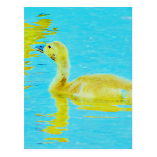 Ganso amarillo del bebé con agua azul clara postal