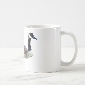 Ganso canadiense taza