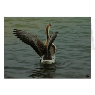 Ganso chino en el lago Travis Tarjeta De Felicitación