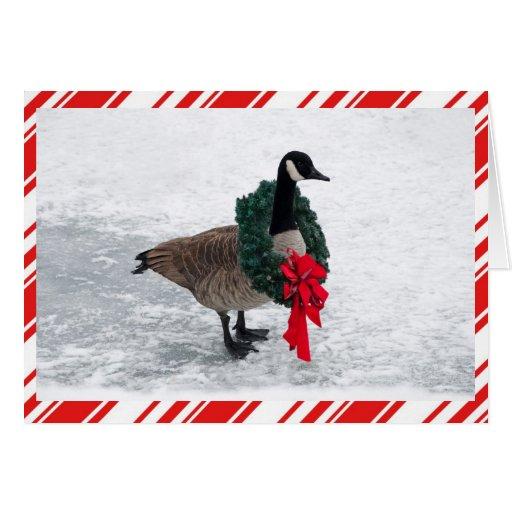 Ganso divertido del navidad con la guirnalda felicitaciones