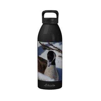 ganso Nevado-sospechado Botellas De Agua Reutilizables