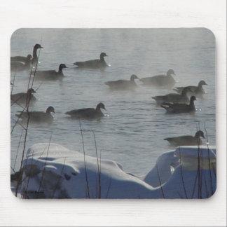 Gansos canadienses B0049 en el río congelado Tapetes De Ratón
