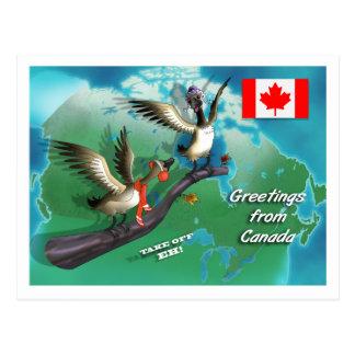 Gansos canadienses postal