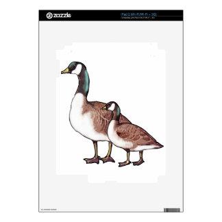 Gansos de Canadá Skins Para iPad 2