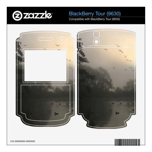 Gansos de Canadá y niebla de la mañana Skin Para El BlackBerry