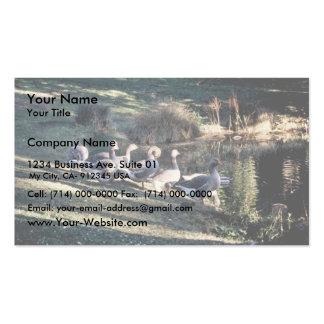 Gansos de ganso silvestre plantillas de tarjeta de negocio