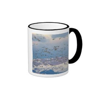 Gansos de nieve durante la migración 2 de la taza de dos colores