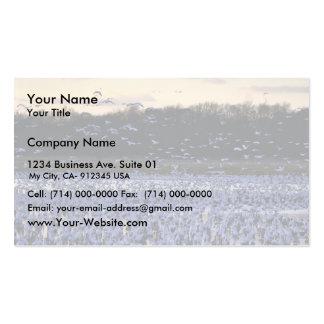 Gansos de nieve tarjetas de visita